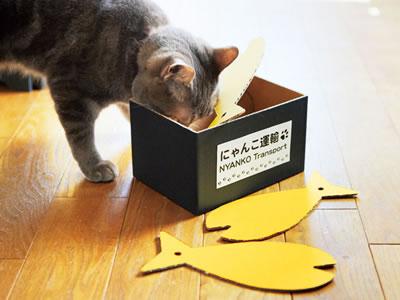 [猫ブログ] いろいろな連載と、ときどきお知らせ。